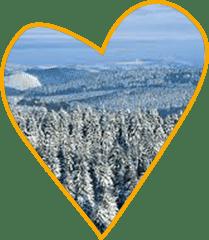 Winterwunderland Sauerland Bob und Skifahren im Winter