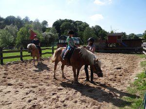 Urlaub auf dem Bauernhof mit Tieren wie Pferden auf Monikas Ferienhof