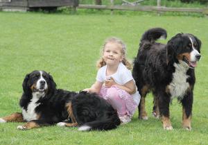 Abenteuerurlaub für Kinder mit Hunden