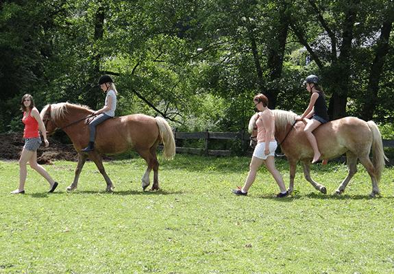 Pferde Reiten für Kinder auf Monikas Ferienhof