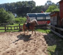 Pferde Reiten auf Monikas Ferienhof